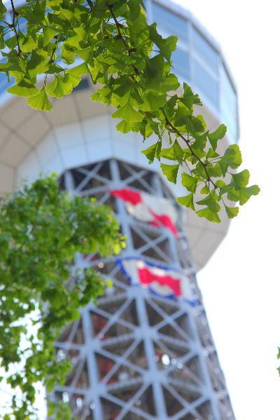 横浜 マリンタワー
