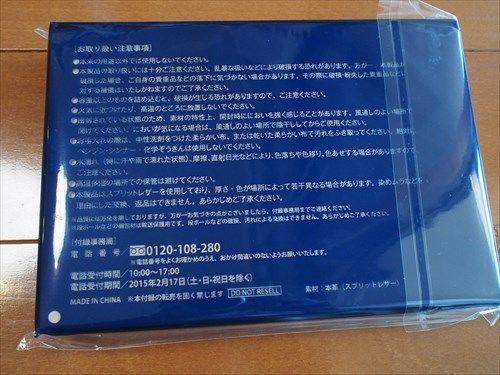 P1100011_R